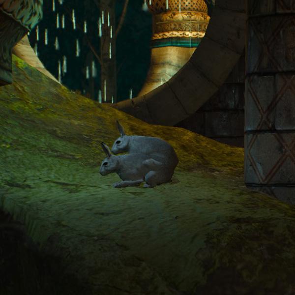 Ведьмак и кролики